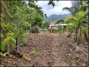 Terreno En Ventaen Penonome, Toabre, Panama, PA RAH: 21-9273