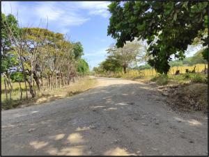 Terreno En Ventaen Antón, El Chiru, Panama, PA RAH: 21-9294