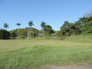 Terreno En Alquileren Arraijan, Cocoli, Panama, PA RAH: 21-9398