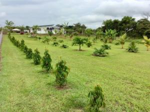 Terreno En Ventaen Aguadulce, Aguadulce, Panama, PA RAH: 21-9538