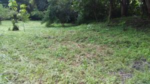 Terreno En Ventaen Antón, El Chiru, Panama, PA RAH: 21-9759