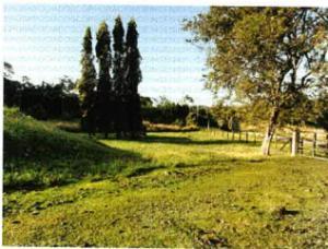 Terreno En Ventaen Panama Oeste, Arraijan, Panama, PA RAH: 21-9884