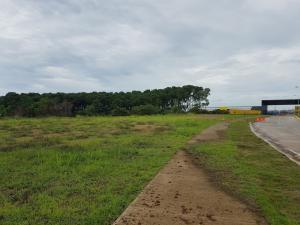 Terreno En Alquileren Panama, Tocumen, Panama, PA RAH: 21-9890