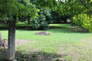 Terreno En Ventaen San Carlos, San Carlos, Panama, PA RAH: 21-9905