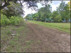 Terreno En Ventaen Antón, El Chiru, Panama, PA RAH: 21-10109