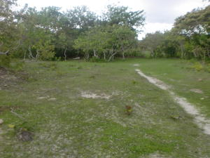 Terreno En Ventaen Cocle, Cocle, Panama, PA RAH: 21-10277