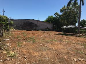 Terreno En Alquileren San Jose De David, David, Panama, PA RAH: 21-10287