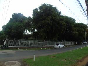 Casa En Alquileren Panama, Obarrio, Panama, PA RAH: 21-10394
