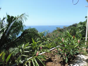 Terreno En Ventaen Portobelo, Garote, Panama, PA RAH: 21-10442