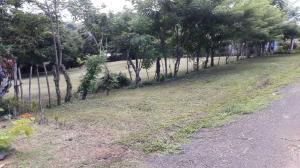 Terreno En Ventaen La Chorrera, Chorrera, Panama, PA RAH: 21-10474