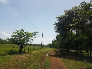 Terreno En Ventaen David, David, Panama, PA RAH: 21-10721