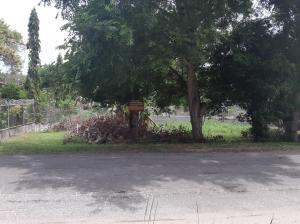 Terreno En Ventaen San Carlos, San Carlos, Panama, PA RAH: 21-10784