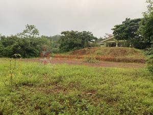 Terreno En Ventaen La Chorrera, Chorrera, Panama, PA RAH: 21-10793