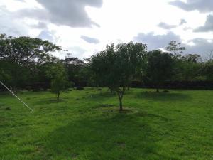 Terreno En Ventaen Boquete, Alto Boquete, Panama, PA RAH: 21-10811