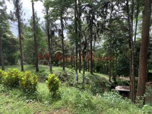Terreno En Ventaen Pacora, Cerro Azul, Panama, PA RAH: 21-10898
