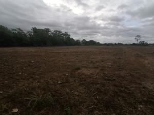 Terreno En Ventaen Bugaba, Aserrio De Gariche, Panama, PA RAH: 21-6565