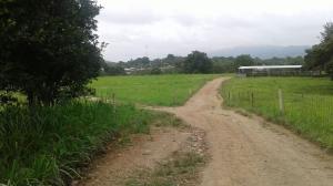 Terreno En Ventaen Pacora, Paso Blanco, Panama, PA RAH: 21-11259