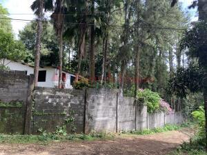 Terreno En Ventaen Pacora, Cerro Azul, Panama, PA RAH: 21-11324