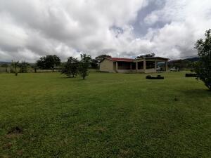 Casa En Ventaen Boquete, Alto Boquete, Panama, PA RAH: 21-11399