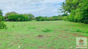 Terreno En Ventaen Las Tablas, Las Tablas, Panama, PA RAH: 21-11518