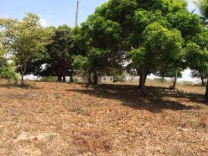 Terreno En Ventaen Antón, El Chiru, Panama, PA RAH: 21-11851