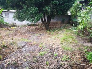 Terreno En Alquileren Panama, Panama Norte, Panama, PA RAH: 21-12030