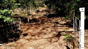 Terreno En Ventaen San Lorenzo, Horconcitos, Panama, PA RAH: 21-12457