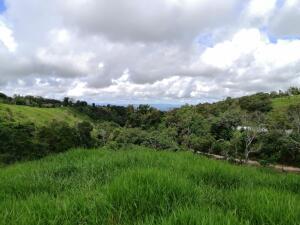 Terreno En Ventaen Dolega, Potrerillos, Panama, PA RAH: 21-12465
