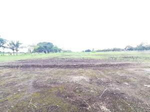 Terreno En Ventaen David, David, Panama, PA RAH: 21-12488