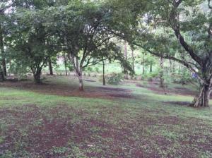 Terreno En Ventaen Panama Oeste, Arraijan, Panama, PA RAH: 22-294