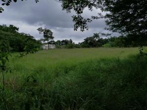 Terreno En Ventaen Chame, Coronado, Panama, PA RAH: 22-344