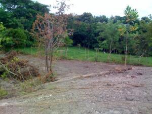 Terreno En Ventaen San Carlos, San Carlos, Panama, PA RAH: 22-579