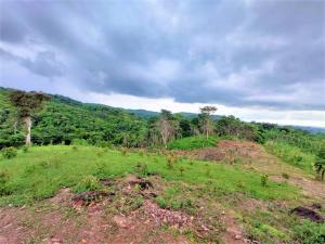 Terreno En Ventaen Panama, Tocumen, Panama, PA RAH: 22-859