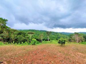 Terreno En Alquileren Panama, Tocumen, Panama, PA RAH: 22-860