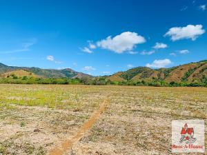 Terreno En Ventaen Tonosi, Cambutal, Panama, PA RAH: 22-867