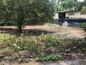 Terreno En Alquileren Panama, Las Cumbres, Panama, PA RAH: 22-1068