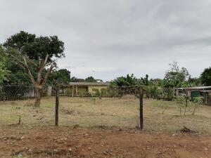 Terreno En Ventaen Dolega, Los Algarrobos, Panama, PA RAH: 22-1142
