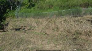 Terreno En Ventaen Panama, Las Mananitas, Panama, PA RAH: 22-1524