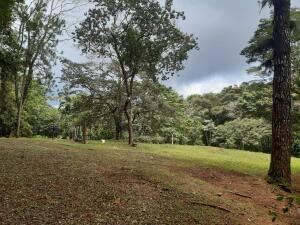 Terreno En Ventaen Pacora, Cerro Azul, Panama, PA RAH: 22-1546