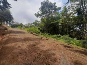 Terreno En Ventaen Pacora, Cerro Azul, Panama, PA RAH: 22-1548