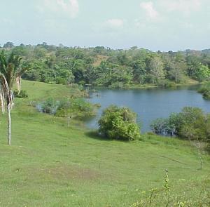 Terreno En Ventaen La Chorrera, Chorrera, Panama, PA RAH: 22-1658