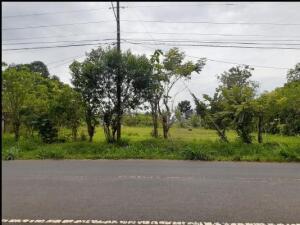 Terreno En Ventaen Herrera, Herrera, Panama, PA RAH: 21-3100