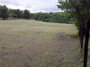 Terreno En Ventaen San Carlos, San Carlos, Panama, PA RAH: 22-1993