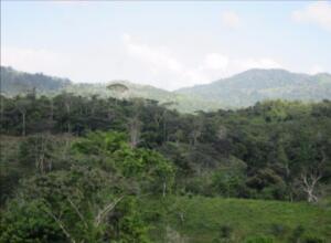 Terreno En Ventaen Colón, Gatun, Panama, PA RAH: 22-2002