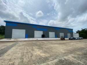 Galera En Alquileren Panama, Tocumen, Panama, PA RAH: 22-2027