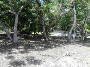 Terreno En Ventaen Chame, Gorgona, Panama, PA RAH: 21-6578