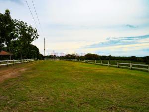 Terreno En Ventaen Cocle, Cocle, Panama, PA RAH: 22-2186