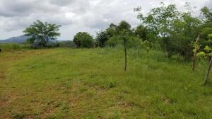 Terreno En Ventaen Panama Oeste, Arraijan, Panama, PA RAH: 22-2247