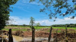 Terreno En Ventaen Cocle, Cocle, Panama, PA RAH: 22-2291