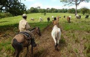Terreno En Ventaen Cocle, Cocle, Panama, PA RAH: 22-2601